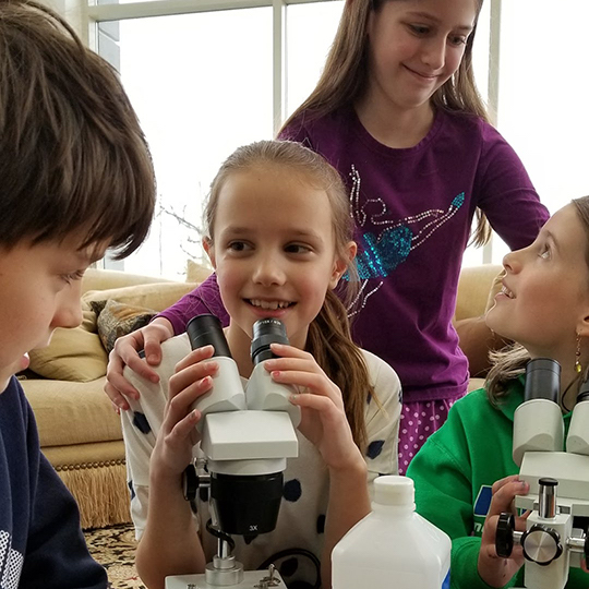 Schoolchildren working with microscopes